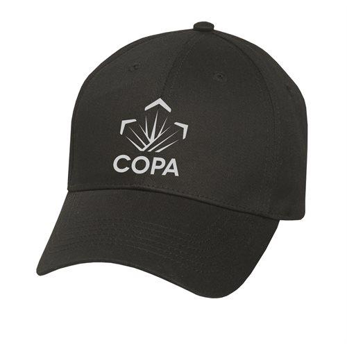 Copa Pilot Licence Holder